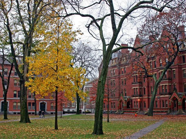Gli studenti espulsi da Harvard per un post su Facebook