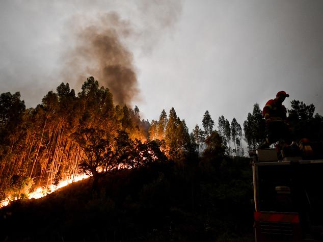 Dieci cose da fare (e non fare) contro gli incendi