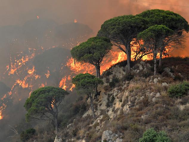 Italia in fiamme, 500 incendi da domare