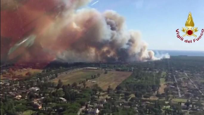 Castelfusano (Roma), pineta devastata da un incendio doloso. Raggi: