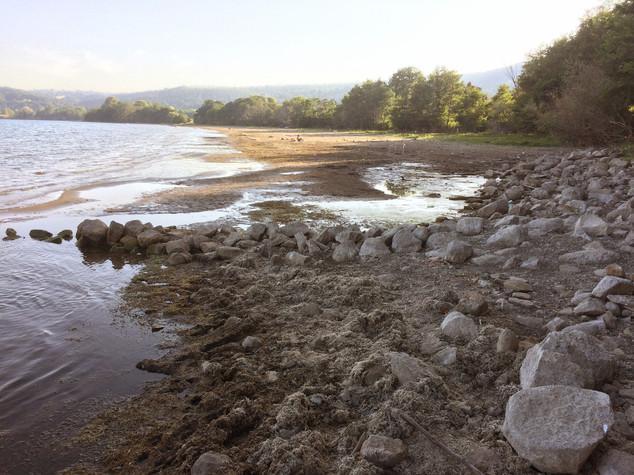 Perché il lago di Bracciano è sul punto di non ritorno