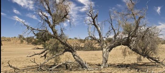 Fra 30 anni in Italia cadrà il 10% in più di pioggia durante l'autunno
