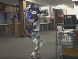 Forse i robot non ci ruberanno il lavoro tanto presto