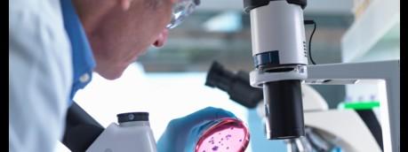 Un microbiologo al lavoro