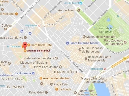 Barcellona, ricercato Moussa Oukabir, 17 anni: guidava furgone