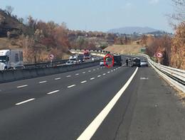 Toro in fuga sull'A1 in uscita da Roma, 10 chilometri di fila