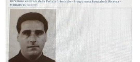 'Ndrangheta: arrestato in Uruguay 'u Tamunga, superlatitante Rocco Morabito