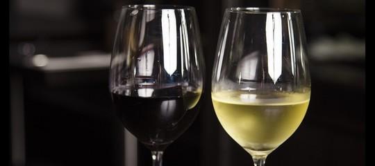 Nasce il network 'Vigne di Roma', 15 aziende vinicole fanno squadra