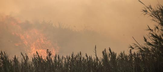 Spagna: vasti incendi in Galizia, 3 morti; fuoco assedia Vigo