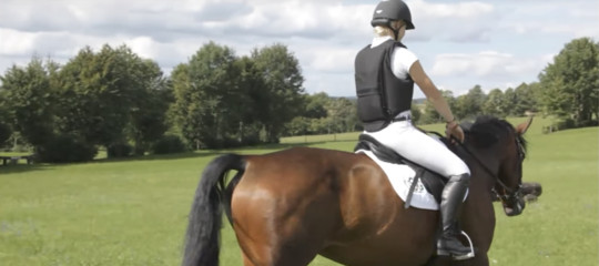 È stato inventato e brevettato l'airbag da cavallo, come funziona. Un video