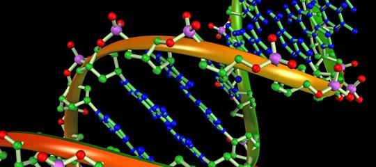 Scoperti due nuovi metodi di correzione di bozze per modificare il DNA
