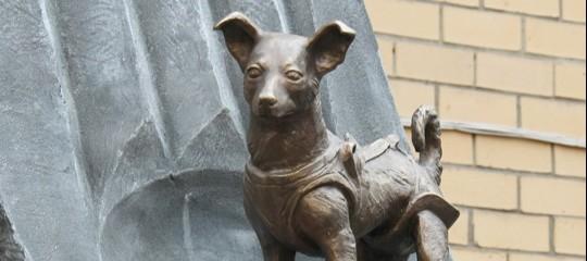 Sessant'anni fa il sacrificio di Laika, che aprì all'uomo gli orizzonti dello spazio