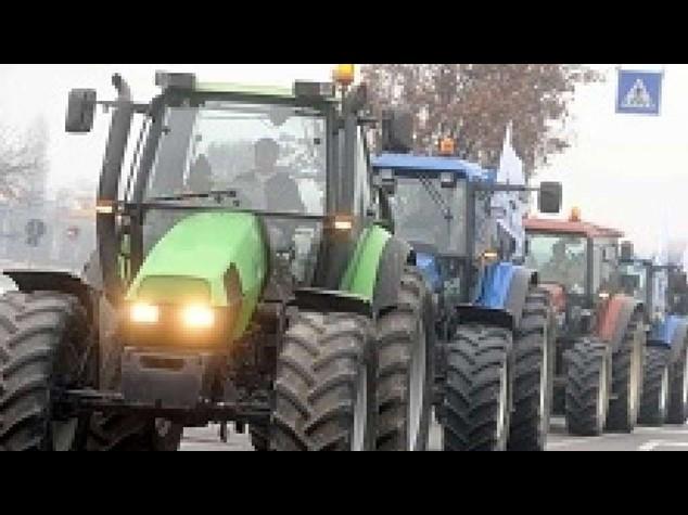 "Quote latte: Ue, Italia recuperi 1,395 miliardi entro 2 mesi. Coldiretti ""eredita' del passato"""