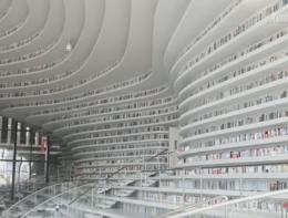 La libreria da un milione di volumi. Su un unico scaffale