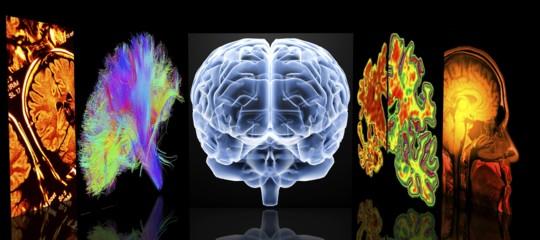 Perché lo stop di Pfizeralla ricerca sul Parkinson non è un segnale di resa