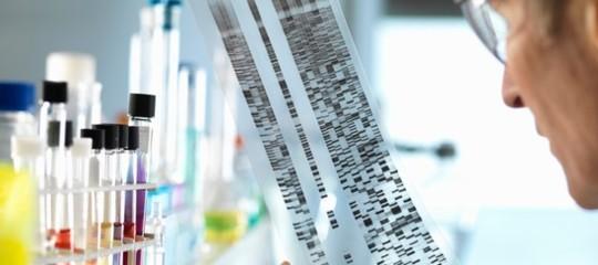 Editing genetico: è finita l'era del 'taglia e incolla'