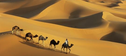 Un team guidato da La Sapienza, studiando il genoma, racconta di quando il Sahara era verde e ospitale