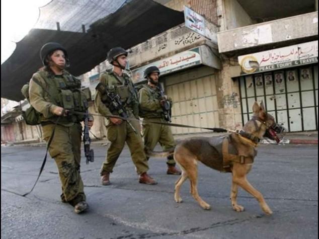 Rapito e ucciso ragazzo palestinese, cresce tensione