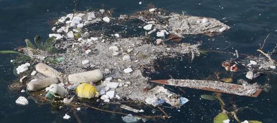 L'Italia è tra i paesi Ue a più alto tasso di inquinamento marittimo