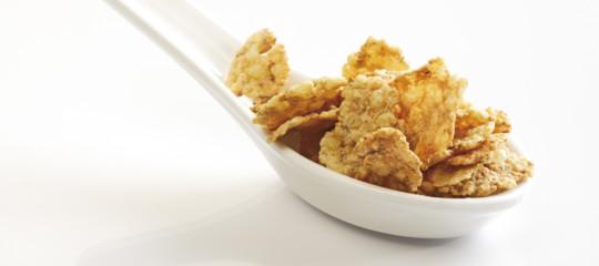 Patatine fritte, crackers ecornflakes: cosa cambia da aprile negli ingredienti