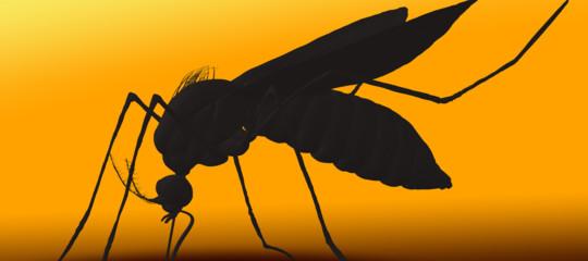 La Cina sta sviluppando un radar per dare la caccia alle zanzare