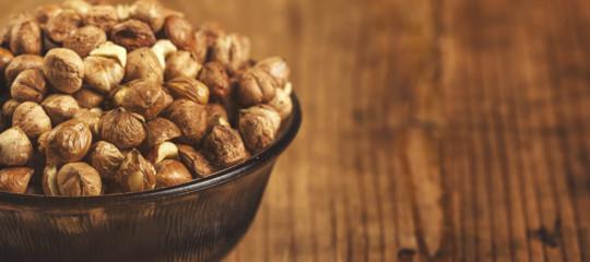 PerchèFerrerorilancia la coltivazione di nocciole in Italia per laNutella
