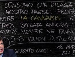 Gli italiani e la cannabis. Il fact-checking alla lavagna