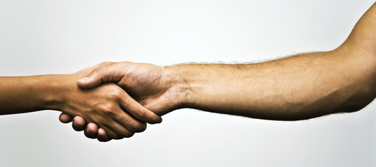 La stretta di mano dice chi siamo. Anche quanto a lungo vivremo