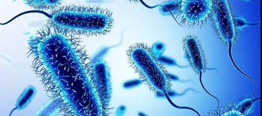 L'Italia ha uno dei tassi di resistenza agli antibiotici più alti in Europa.