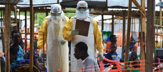ebola campioni sangue persi
