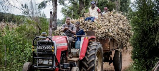 Ispra eFaouniteperpromuovere l'alimentazione sostenibile