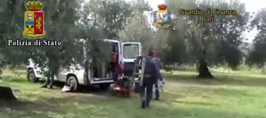 Quanti sono in Italia i 'para schiavi' che lavorano sotto caporalato agricolo