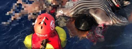 Il nuovo duro attacco di Saviano a Salvini e Toninelli dopo i morti in mare di questa notte