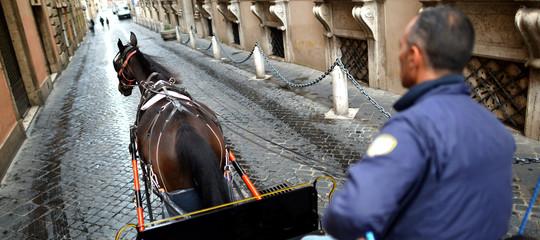 botticelle carrozze cavalli roma