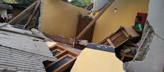 indonesia terremoto morti