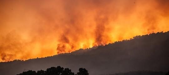 Il caldo e gli incendi di questo periodo sono ancora niente. Un rapporto
