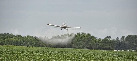 Usa:Monsantocondannata a risarcire ungiardinieremalato di cancro. È la prima volta