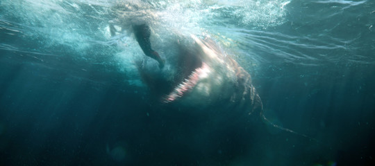 Usa e Cina danno la caccia aShark,lo squalo preistorico. Un mostro di incassi