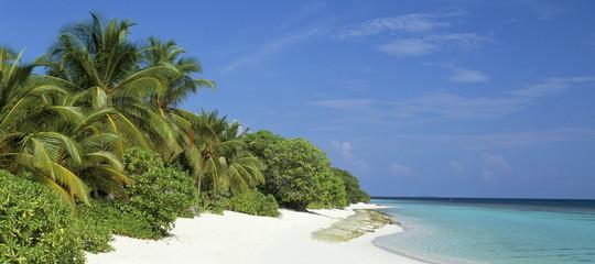 lavoro sogno libreria maldive