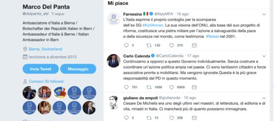 ambasciatore svizzera likecalenda