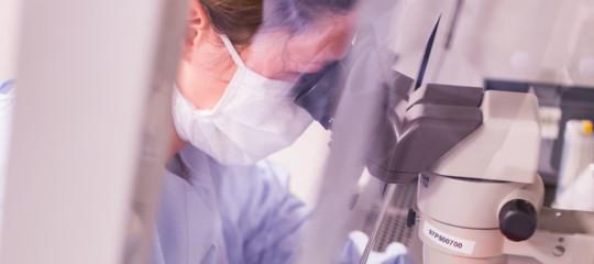 Cellule cerebrali riprodotte in laboratorio per curare l'ictus. Una ricerca