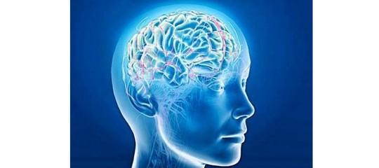Salute, scoperte possibili cause delle malattie neurodegenerative