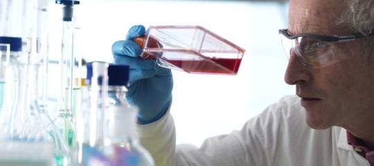 Il test che trova il farmaco giusto per curare un tumore