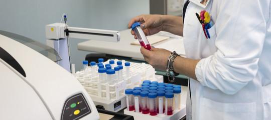 Svelato l'albero genealogico delle staminali del sangue. Lo studio su Nature