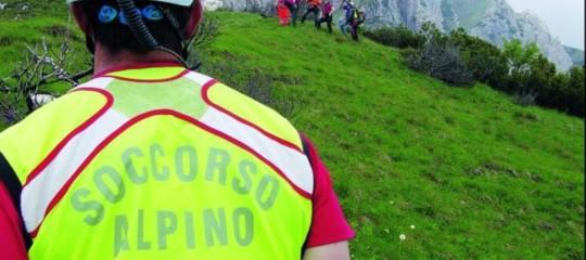 Calabria: cane del soccorso alpino salva 2 cercatori di funghi sulla Sila