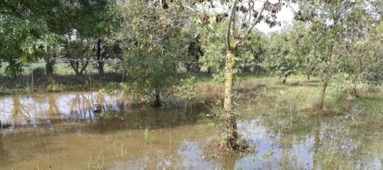 sardegna alluvione senza elettricita
