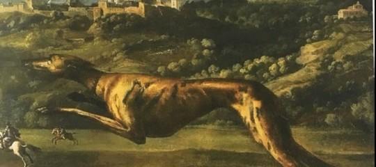Come sono stati rappresentati i cani nella storia dell'arte. Una mostra