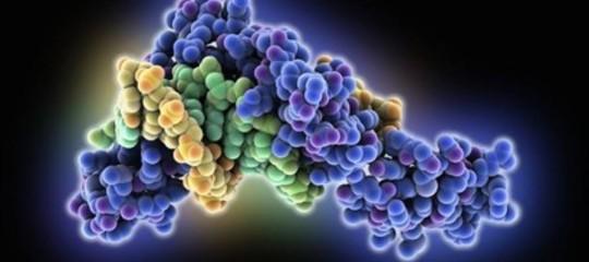 Ricerca: scoperto legame tra alcune pillole per la pressione e il cancro al polmone
