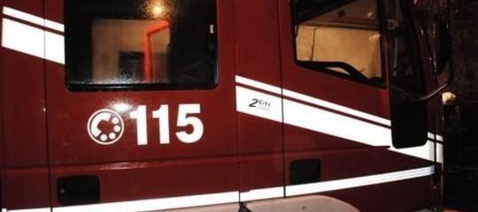 Maltempo: cade un pino e schiaccia auto, due morti nel Frusinate