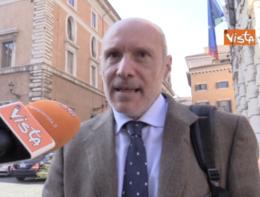 """M5s, De Falco: """"Noi siamo coerenti, non dissidenti"""""""